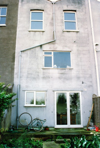 Gwilliam Street back garden