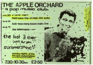 Apple Orchard Brighton flyer