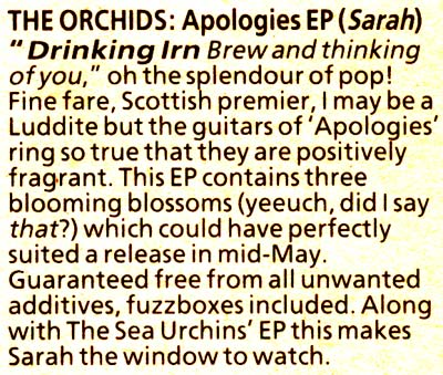 The Orchids, Apologies